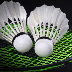 Dulverton Badminton